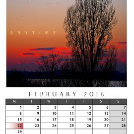AnYtime Calendar 2016::Backspace