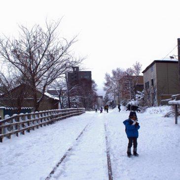 ทริปฉุกละหุกคลุกหิมะ (ธันวา 58)