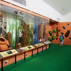 Queen Sirikit Botanic Garden::Resort