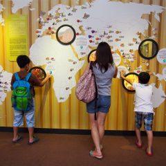 Queen Sirikit Botanic Garden::Family