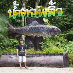 Green Chantaburi::Family