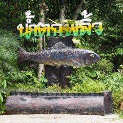 Green Chantaburi::Resort