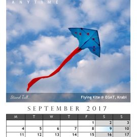 AnYtime Calendar 2017::Off The Wall… Stand Tall