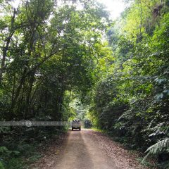 Kaeng Krachan National Park::Resort