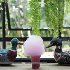 Cafés Khao Yai::Resort