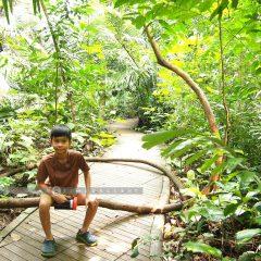 Uthai Nature Trip::Family