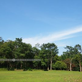 Huai Kha Khaeng::Resort