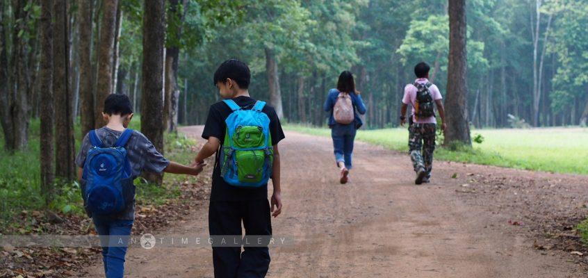 ถ้าเราเหนื่อยล้า จงเดินเข้าป่า