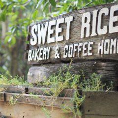 Sweet Rice::Resort