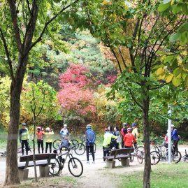 Seoul Forest Park::Resort